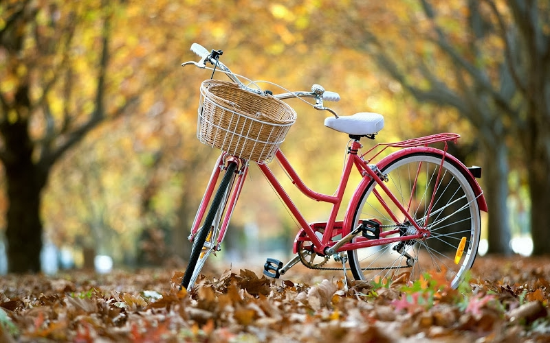 велосипед напрокат в Харькове