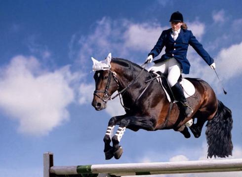 Новый национальный рекорд в Харькове: на лошадях