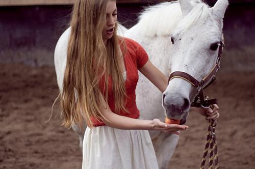 конные прогулки Харьков